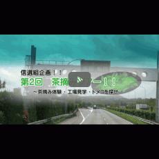 【信選組様】第2回茶摘みツアー