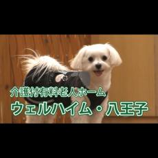 【ウェルハイム八王子様】紹介動画